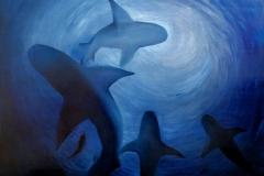 squali_s